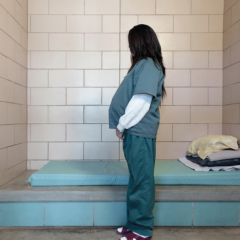 Bill seeks to improve conditions of pregnant inmates