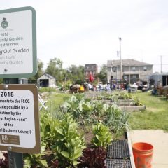 Garden grows bumper crop of fresh food, sense of community