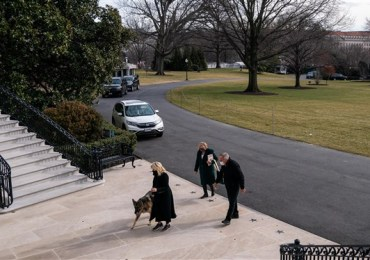 Bidens bring family pets back to White House